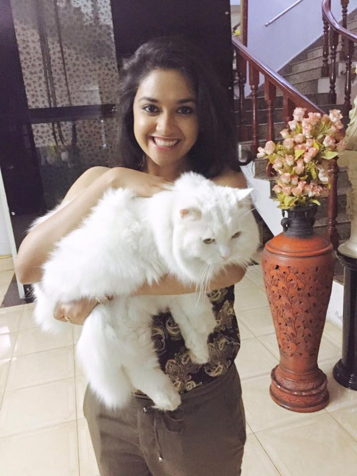 keerthy suresh with her cat
